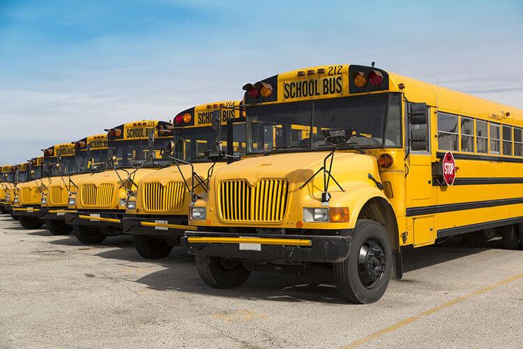 School Bus Transportation Business for Sale